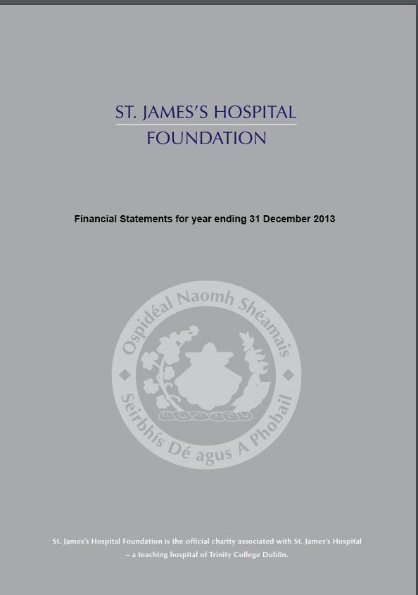 financial statements 2013